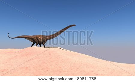 walking mamenchisaurus on sand terrain