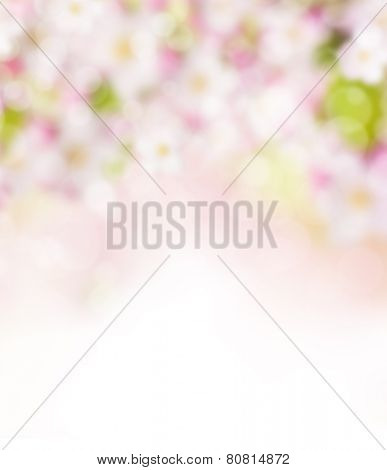 Abstract blurry spring background with spot lights