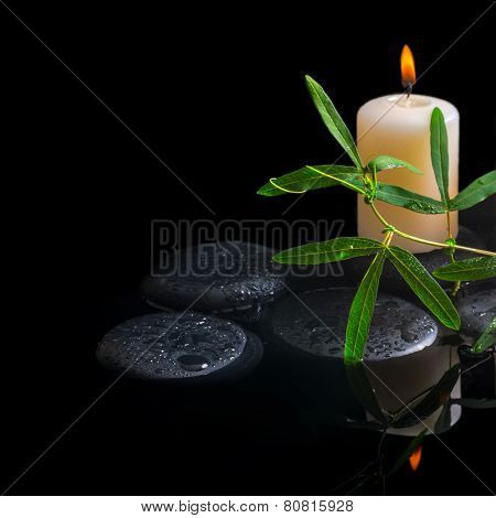 Spa Background Of Green Tendril Passionflower, Candle And Zen Stones With Drops In Reflection Water,