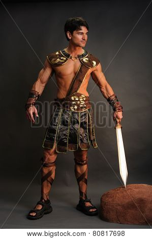 handsome barbarian