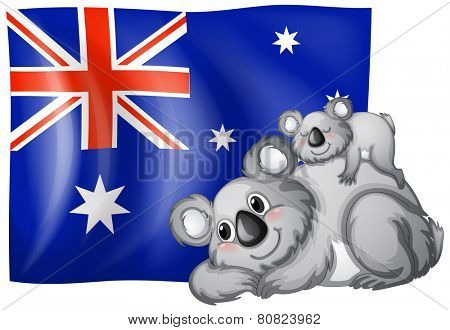 Illustration of an australian flag and koalas