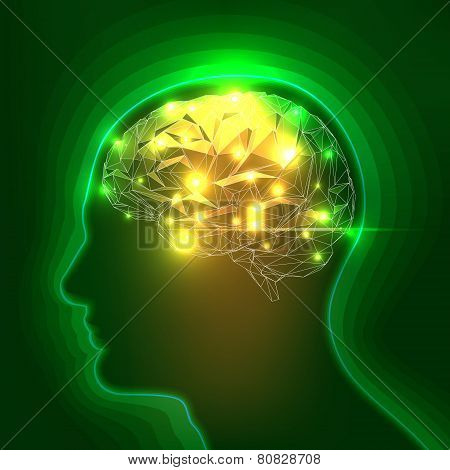 Abstract Human Head Silhouette with a Brain. Vector Illustration