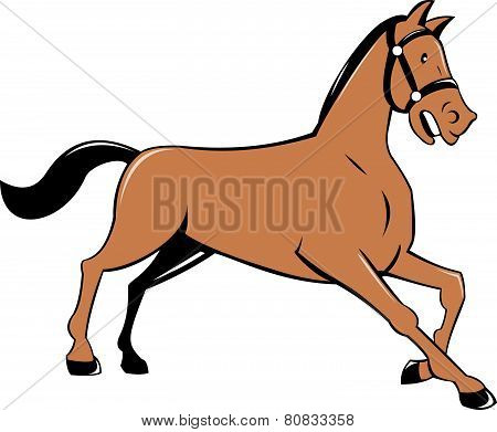 Horse Kneeling Down Cartoon