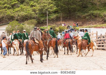 Youngs Latin Cowboys Riding Horses