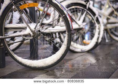 Bikes With Snow