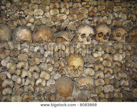 Cráneos en las catacumbas de París