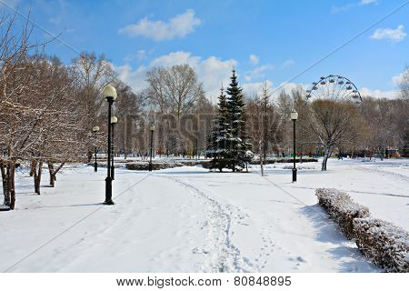 Winter Park In Snow.