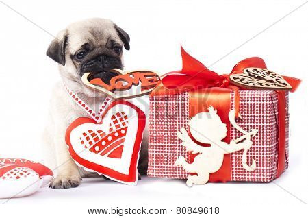 handmade hearts and pug