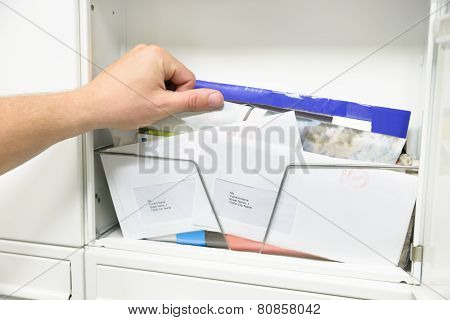 Man Taking Letter From Opened Mailbox