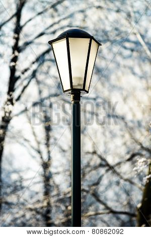 Street Lantern In Winter Snowy City Park