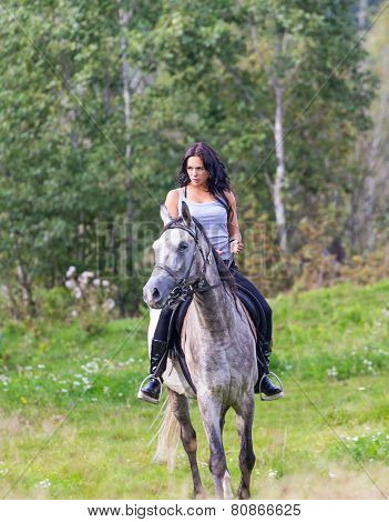 Elegant Attractive Woman Riding A Horse Meadow