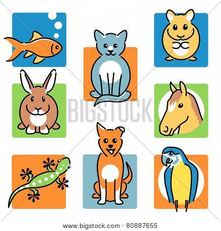 Popular pet animal icons in bright colours