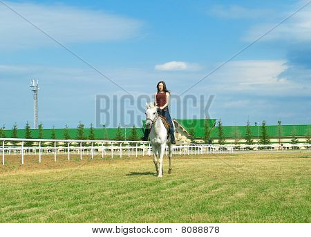 Girl Embraces A White Horse