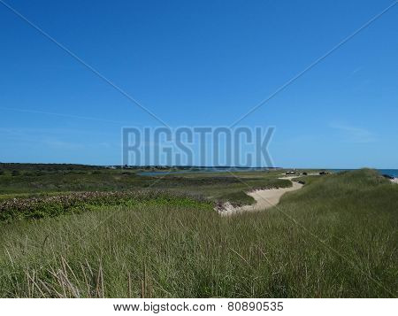 Grassy Lowland With Sand Dune