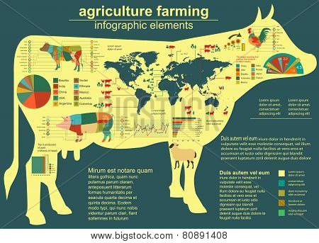 Agriculture infographics. template. Animals and garden.