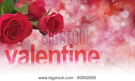 Valentine Roses Header