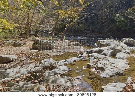 Scenic Woodland River In Autumn