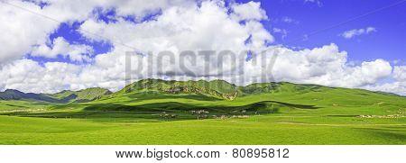 meadow,skyline and landscape in tibet
