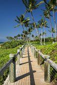 foto of board-walk  - Board walk beside beach in Wailea - JPG