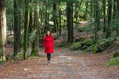 pic of overcoats  - Young woman walking alone on a forest path wearing a red overcoat - JPG