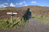 stock photo of southwest  - Direction sign on the Southwest Coast footpath near Baggy Point headland Croyde North Devon England - JPG