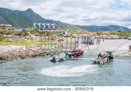 Crayfish Boats Being Pulled Onto Trailers At Kleinmond Harbor.