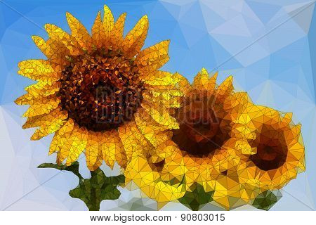 Low Poly Of  Sunflower
