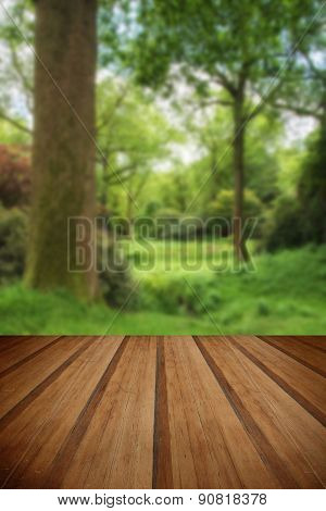 Landscape Image Of Beautiful Vibrant Lush Green Forest Woodland Scene With Wooden Planks Floor