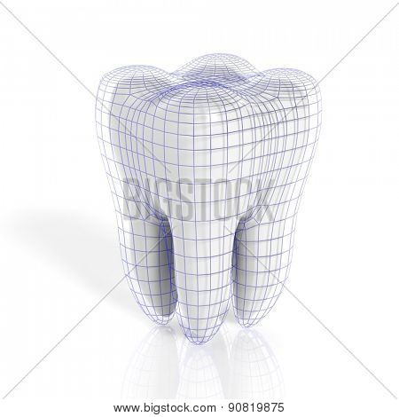 Tooth with virtual grid isolated on white background