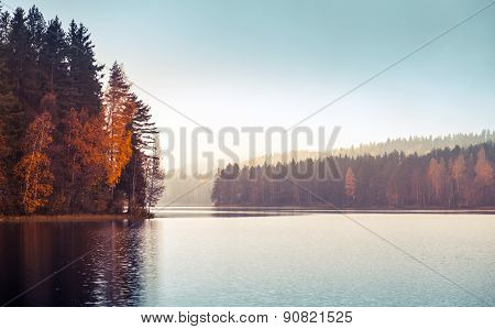Autumnal Landscape With Threes On A Lake Coast