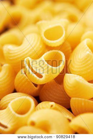 Macaroni italian pasta background, close up