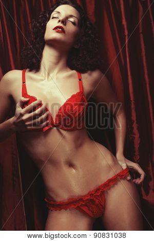 Sexy brunette woman posing in lingerie