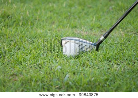 Drive Golf On The Grass