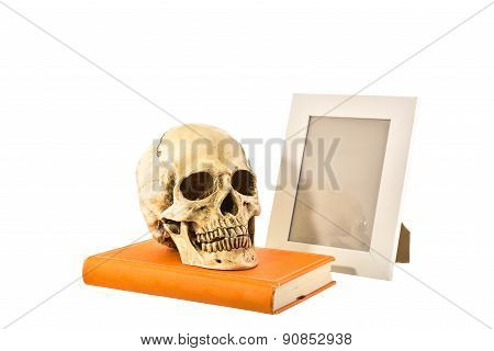 Still Life White Human Skull On Orange Book With Picture Frame On White Background