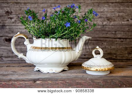 Bouquet Of Violet Flowers In White Tea Pot