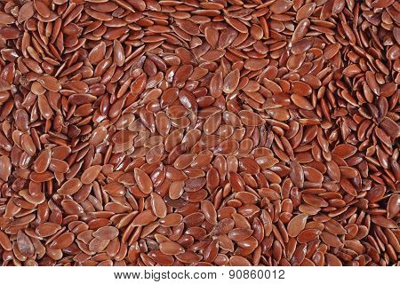 Linseed Background