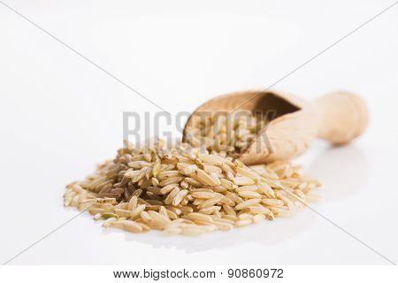 Whole Rice Pile On White Background