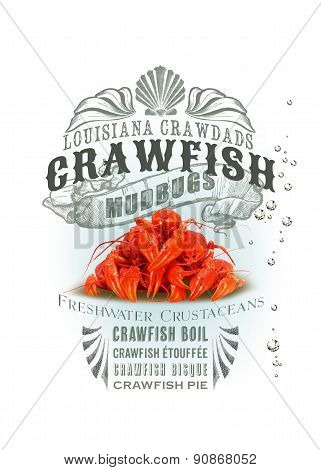 Louisiana crawfish NOLA collection