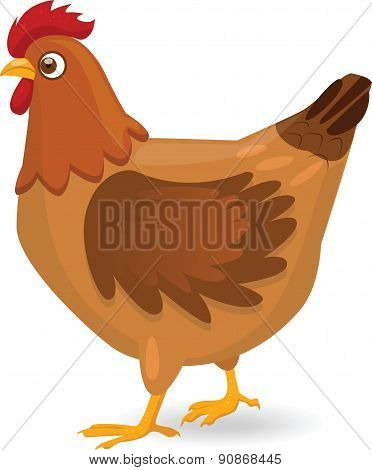 Hen - Illustration