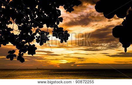 Jungle and Last Rays Sunset Getaway