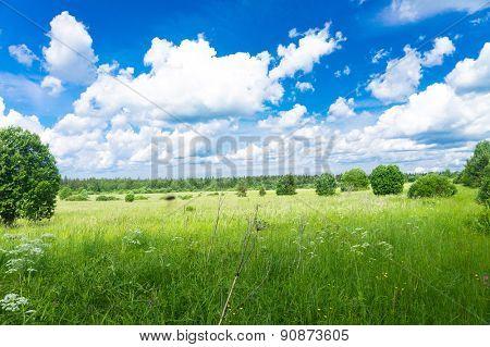 Fresh Landscape Vibrant Springtime