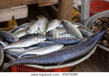 Traditional asian fish market