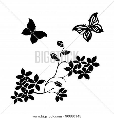 twig cherry blossoms and butterflies