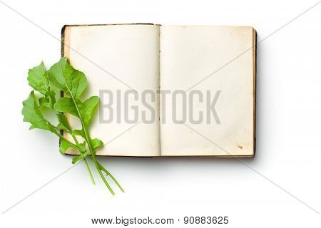 the arugula leaves on old book