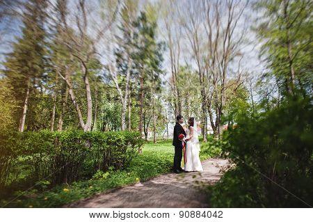 Wedding Couple. Tilt-shift Effect