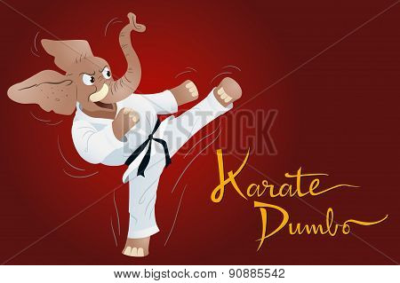 Karate Dumbo