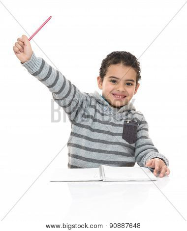 Happy Smiling Young Schoolboy Studying