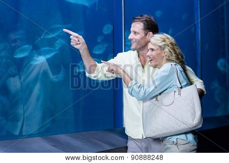 Happy couple pointing a fish tank at the aquarium