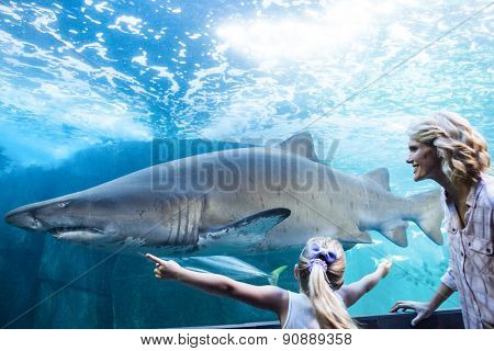 Daughter measure a shark with her hands at the aquarium