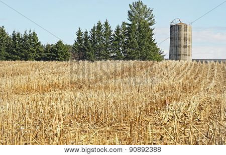 Corn field that has been harvested.  Tall concrete Silo in background
